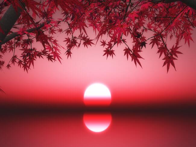 L'automne et l'énergétique chinoise